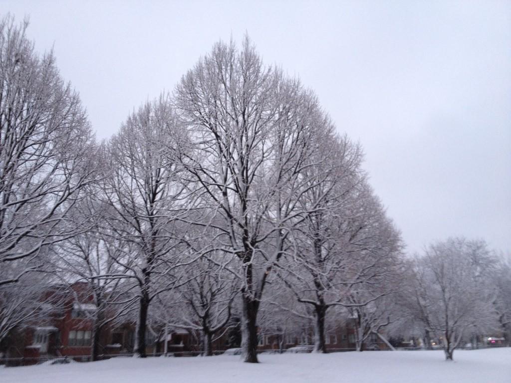 PP-winter
