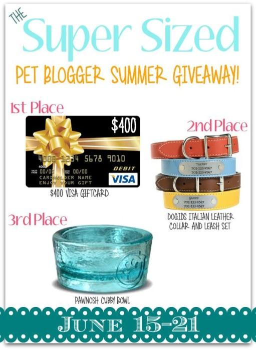 Super-Sized Pet Blogger Summer Giveaway Prizes