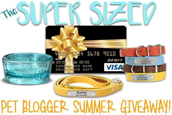 Super-Sized Pet Blogger Giveaway