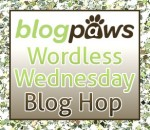 BP_Wordless_wed_Hop_Logo_2014-150x130
