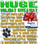 Enter now through 12/21 to win $250 in PayPal Cash.