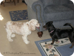 #TBT When Dolly Met Taffy