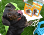 New Zuke's® Treats — Z-Bones® and Lil' Links™ — Dolly's Review