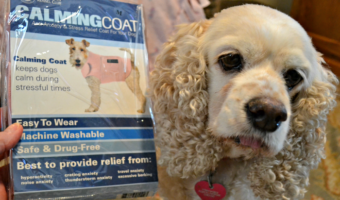 3 Reasons to Use a CalmingCoat™ For Your Dog