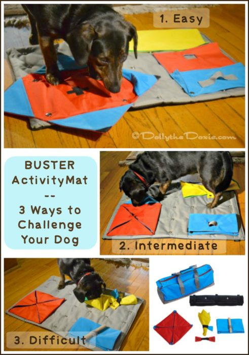 BUSTER Pet Products ActivityMat