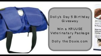 Dolly's 6 Days of Birthday Giveaways — Day 5!