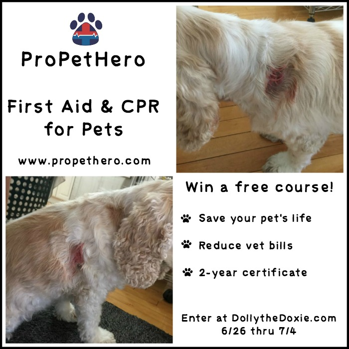 ProPetHero Pet First Aid
