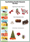 Avoid These Holiday Health Hazards to Pets