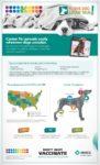 Dog Flu Facts: Why Pet Parents Should be Concerned