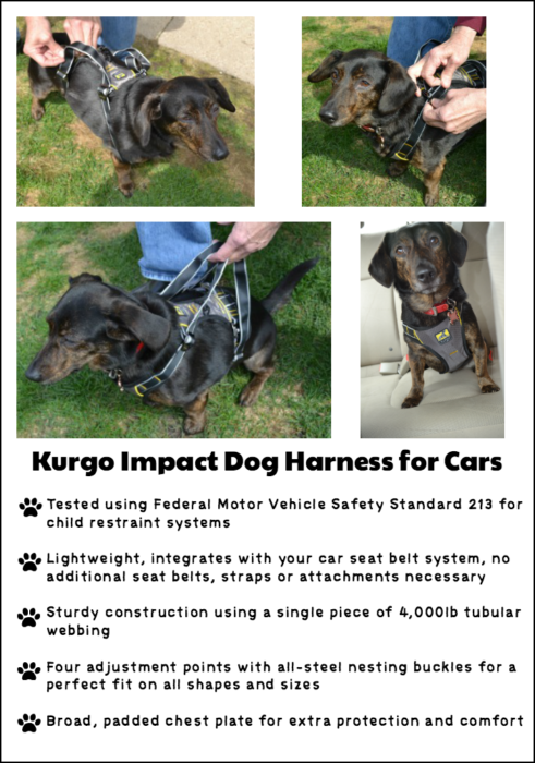 Features of Kurgo impact dog harness