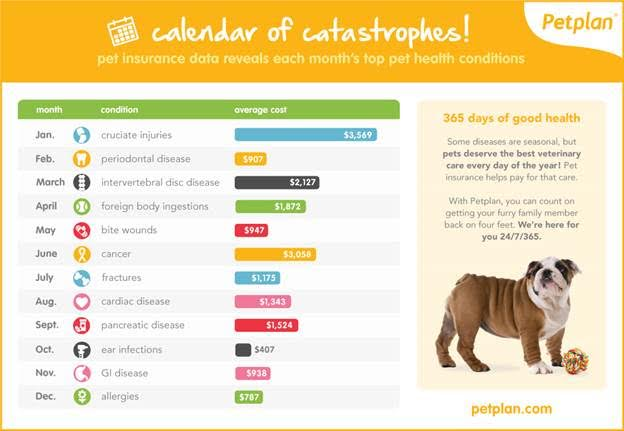 Top pet health conditions by month according to PetPlan
