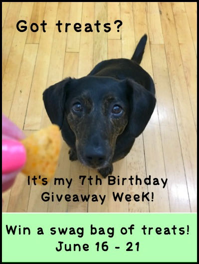 Dolly's 7th Birthday Giveaway Week