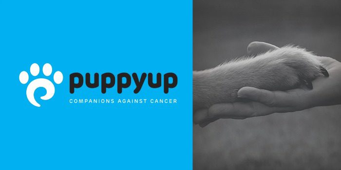 Puppy Up Foundation fighting canine cancer