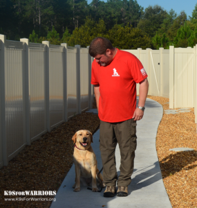 What can service dogs do K9s for Warriors