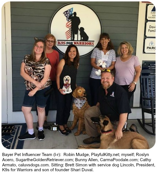 service dogs support veterans with PTSD