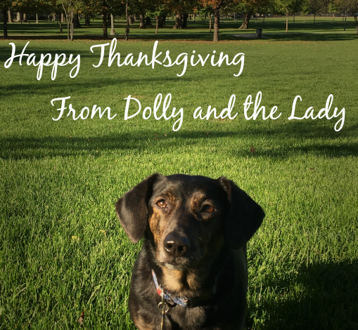 Dolly's Tips for a Pet-Safe Thanksgiving Dinner