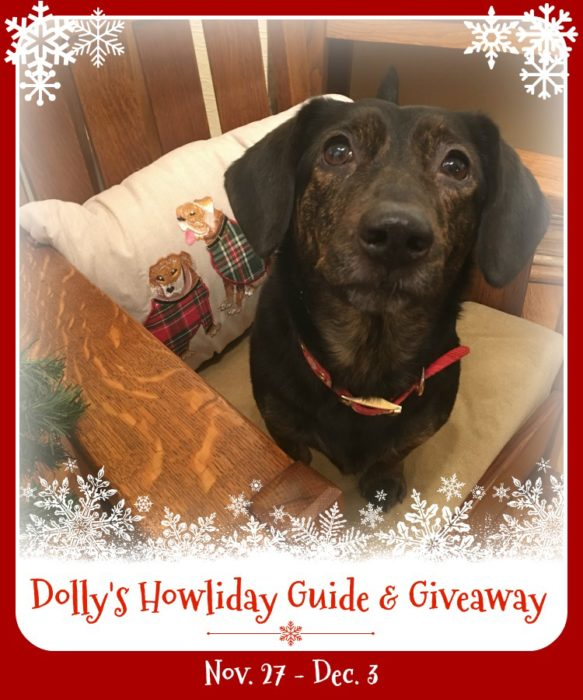 holiday gift guide with gift ideas for your pets