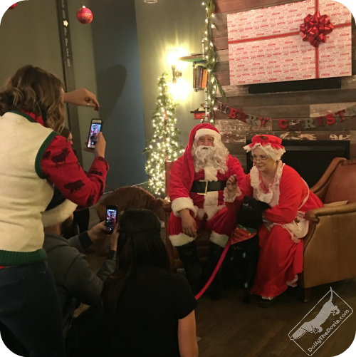Santa and Mrs Claws pose for real dog moms